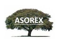 http://federacionrcd.org/wp-content/uploads/asorex-250x207.jpg